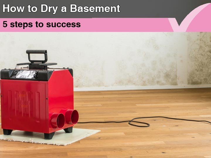 How to Dry a Basement | 5 Steps to Success