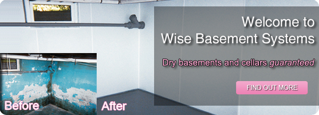 welcome to wise basement systems. dry basements and cellars guaranteed